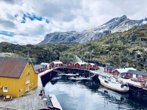 Norvège témoignages